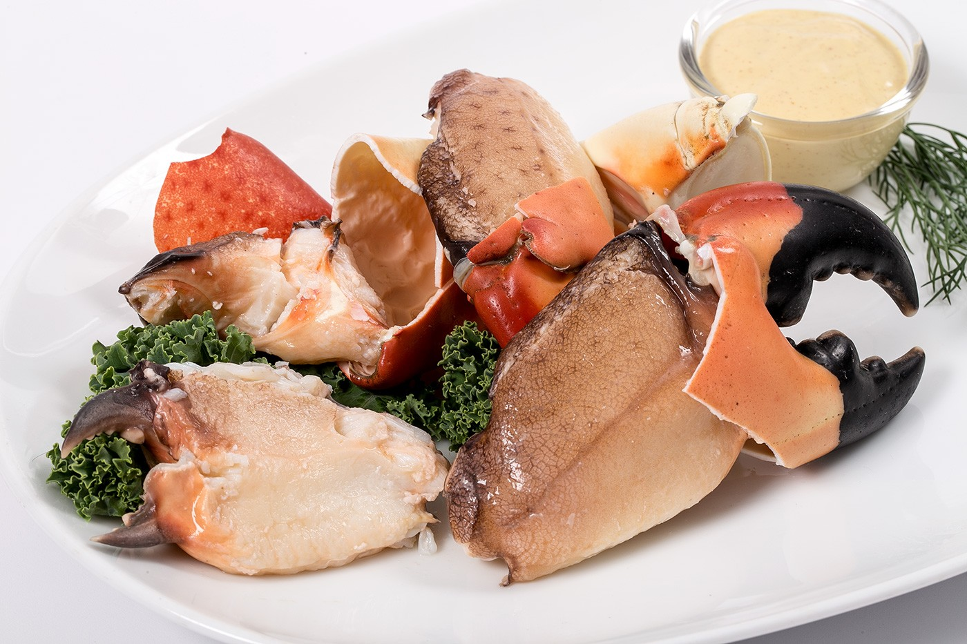 Wild Stone Crab Claws