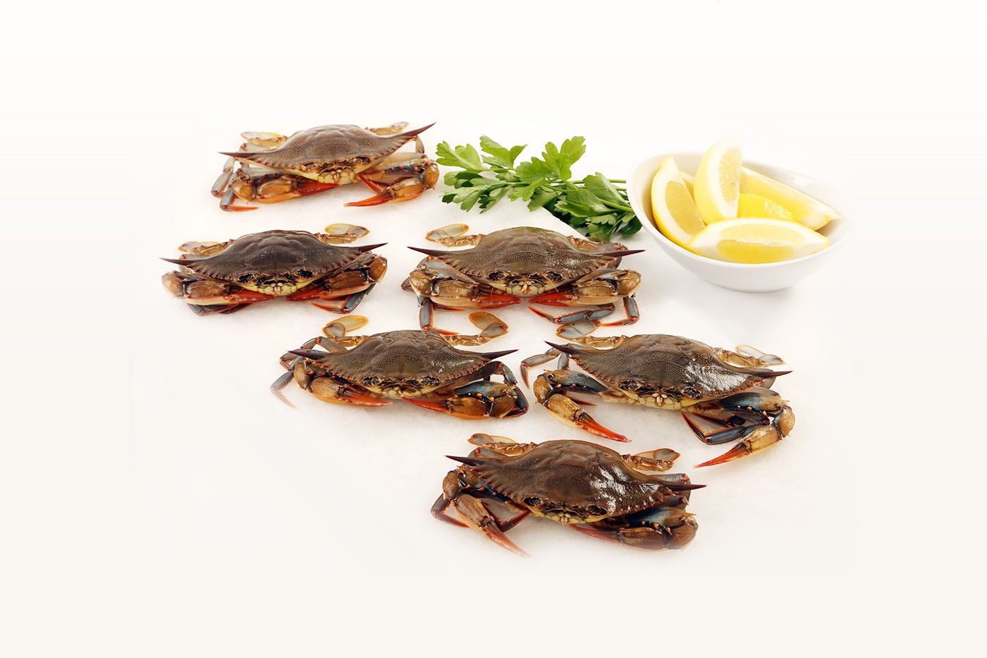 Wild Soft Shell Crabs
