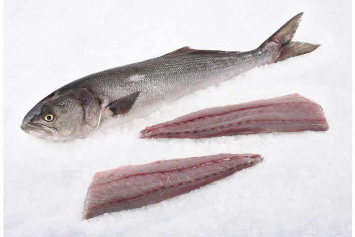 Wild Bluefish Fillet