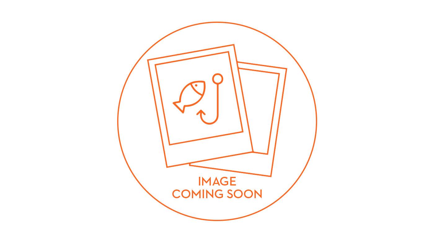 Organic Salmon Fillet