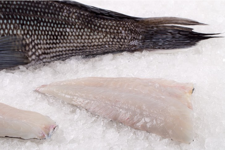 Wild Black Sea Bass Fillet
