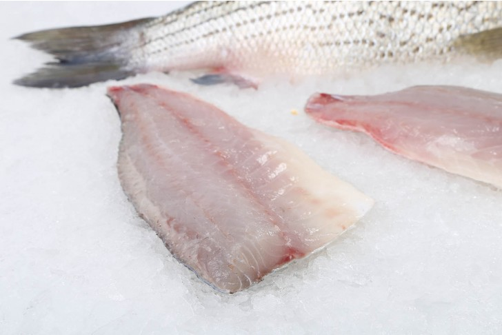 Farmed Striped Bass Fillet