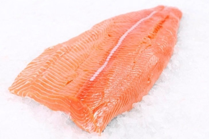 New Zealand King Salmon Fillet